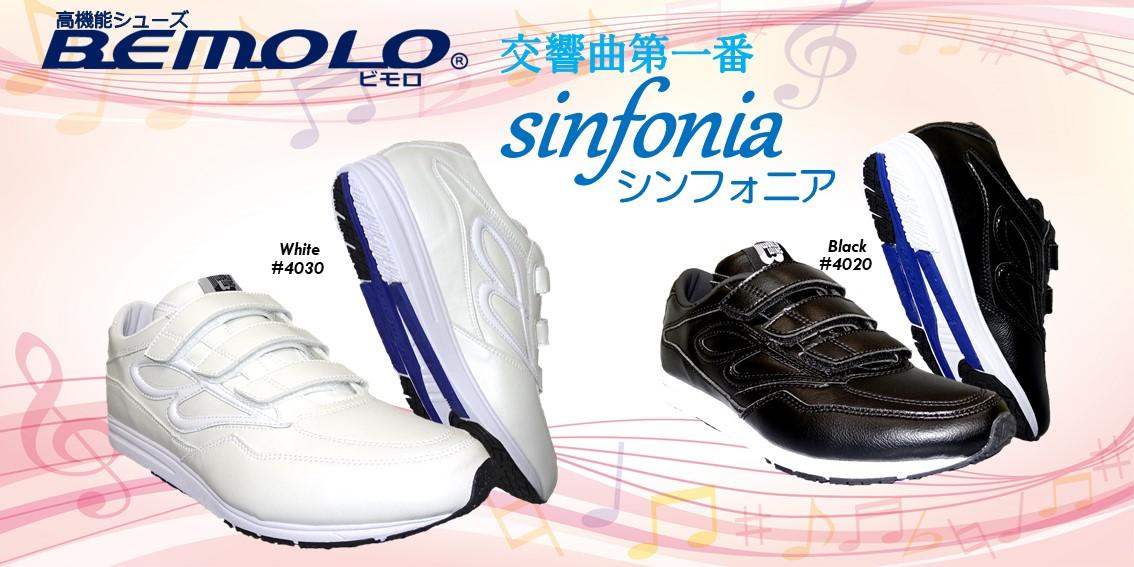 /fs_sinfonia/top2.JPG